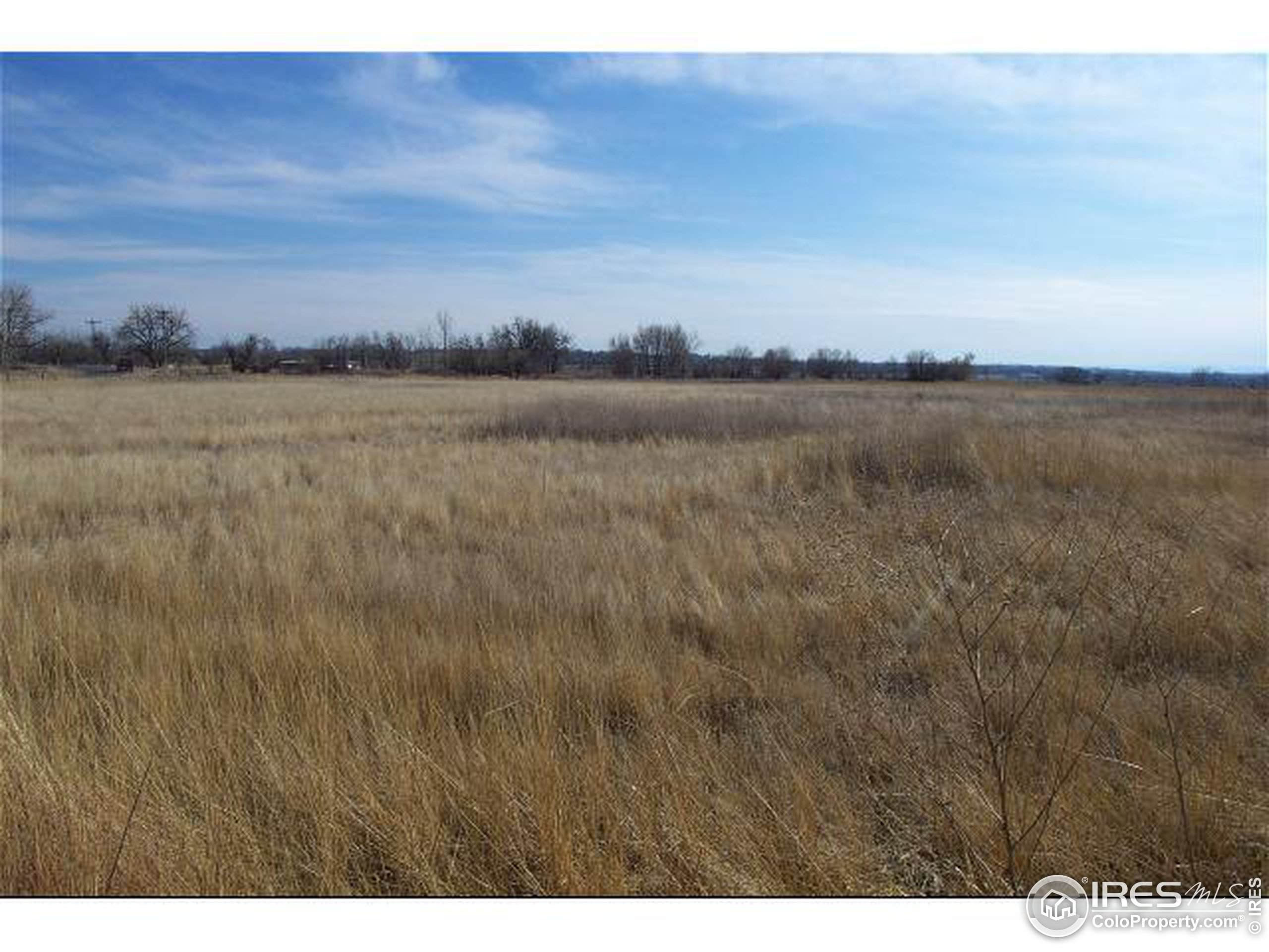 1760 Tabeguache Mountain Dr, Loveland, CO 80538 (#861951) :: The Griffith Home Team
