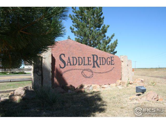 6 Saddle Ridge Dr, Fort Morgan, CO 80701 (MLS #862253) :: 8z Real Estate