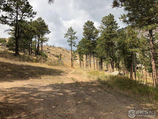 529 Skyline Dr, Drake, CO 80515 (MLS #862372) :: 8z Real Estate