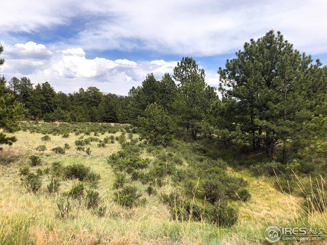 4464 Doe Valley Rd, Guffey, CO 80820 (#862787) :: The Peak Properties Group