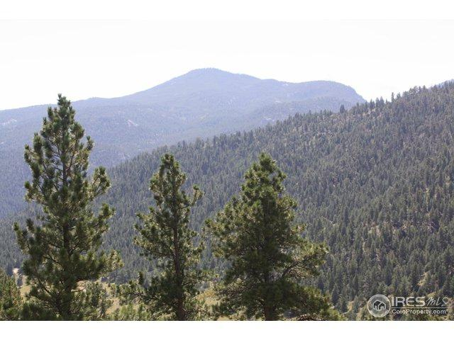 0 Dunraven Glade Rd, Glen Haven, CO 80532 (MLS #862878) :: 8z Real Estate