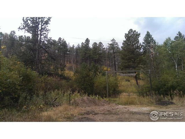 375 Davis Ranch Rd, Bellvue, CO 80512 (MLS #863062) :: Downtown Real Estate Partners