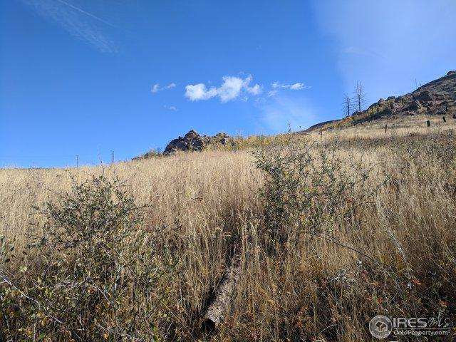 276 Crocus Dr, Bellvue, CO 80512 (MLS #863686) :: Downtown Real Estate Partners