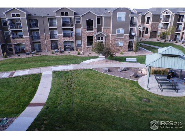 1425 Blue Sky Cir 15-304, Erie, CO 80516 (MLS #863804) :: 8z Real Estate