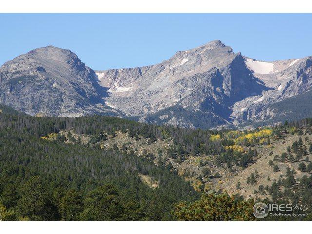 1565 Highway 66 #53, Estes Park, CO 80517 (MLS #863913) :: The Daniels Group at Remax Alliance