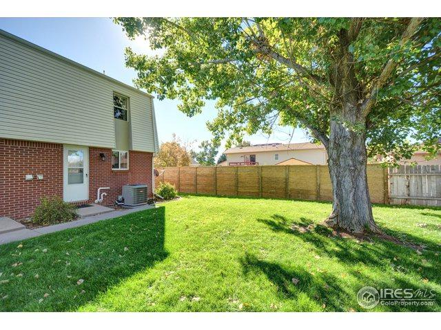 711 3rd St F1, Windsor, CO 80550 (MLS #864193) :: The Daniels Group at Remax Alliance