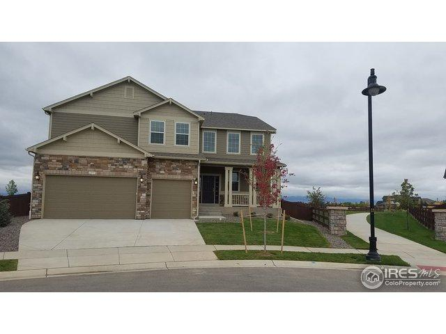 6095 Washakie Ct, Timnath, CO 80547 (MLS #864231) :: 8z Real Estate