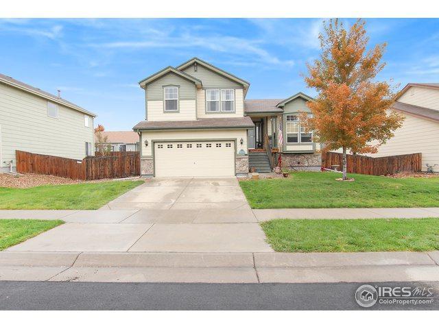 4353 Mt Lincoln St, Brighton, CO 80601 (MLS #864315) :: Kittle Real Estate