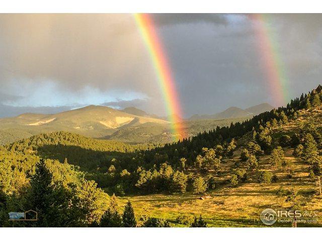 9586 Sugarloaf Rd, Boulder, CO 80302 (MLS #864495) :: 8z Real Estate