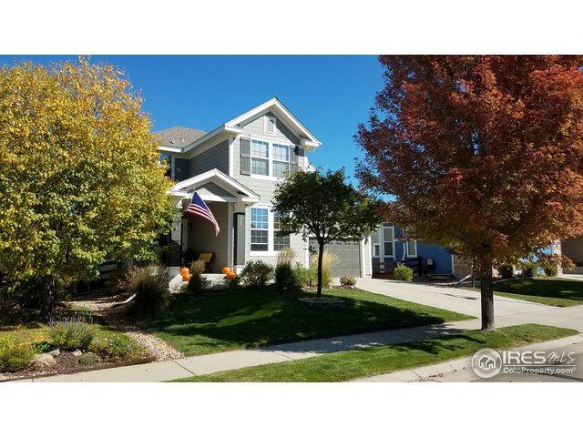 427 Mazzini St, Erie, CO 80516 (MLS #864789) :: 8z Real Estate