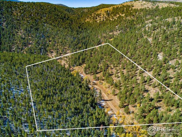 27836 Buckhorn Rd, Bellvue, CO 80512 (MLS #865164) :: Downtown Real Estate Partners
