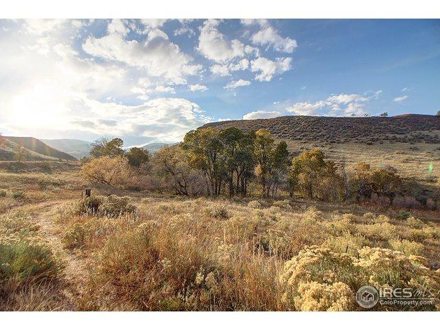 Rist Canyon Rd, Bellvue, CO 80512 (MLS #865450) :: Downtown Real Estate Partners