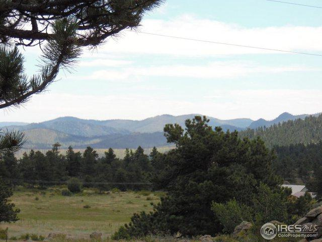 438 Drake Ranch Rd, Livermore, CO 80536 (MLS #866207) :: Kittle Real Estate