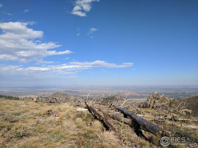0 Rist Canyon Rd, Bellvue, CO 80512 (MLS #866765) :: Downtown Real Estate Partners