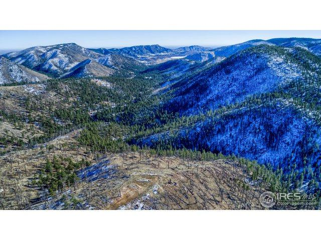 2840 Davis Ranch Rd, Bellvue, CO 80512 (MLS #866929) :: Downtown Real Estate Partners