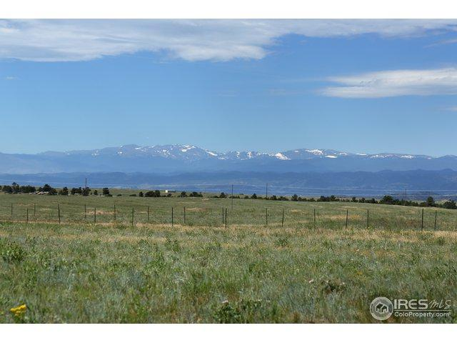 1360 Buffalo Horn Rd, Livermore, CO 80536 (MLS #866983) :: Kittle Real Estate
