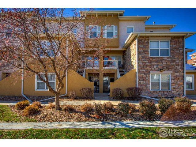 810 Lucca Dr, Evans, CO 80620 (MLS #867051) :: Tracy's Team