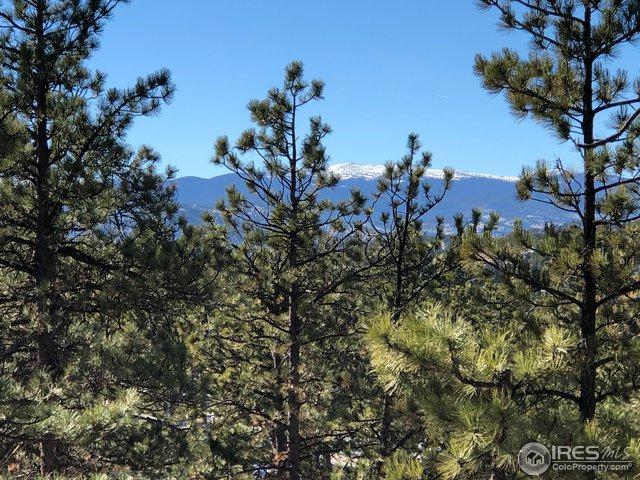 544 Arikaree Peak Dr, Livermore, CO 80536 (MLS #867143) :: Kittle Real Estate