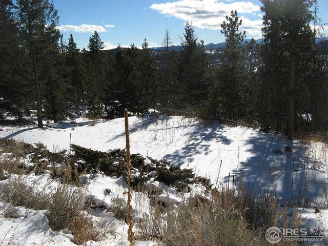 95 Wenatchee Ct, Red Feather Lakes, CO 80545 (MLS #867605) :: Kittle Real Estate