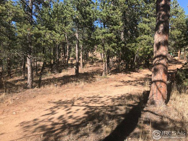 173 Pine Dr, Lyons, CO 80540 (MLS #867955) :: Tracy's Team