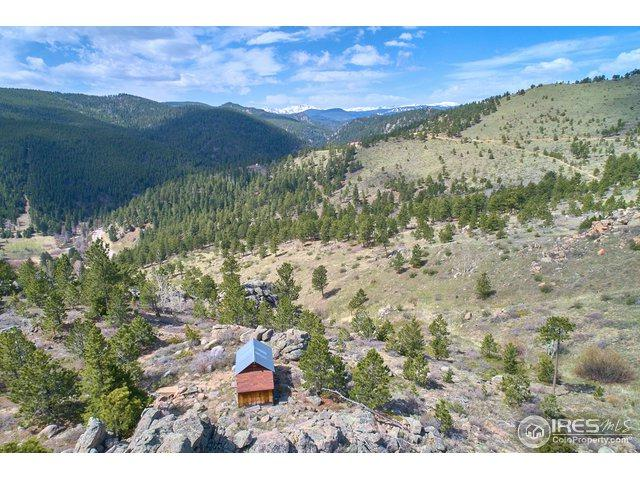 5000 Ridge Rd, Nederland, CO 80466 (MLS #868274) :: The Daniels Group at Remax Alliance