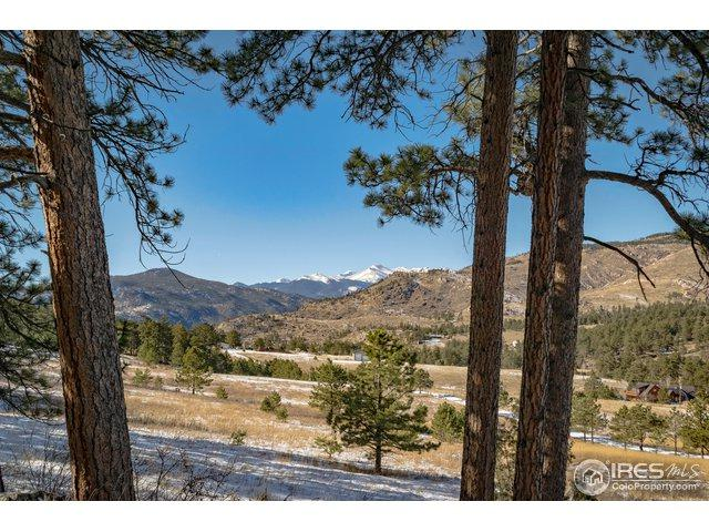 Picacho Pl, Drake, CO 80515 (MLS #868445) :: Downtown Real Estate Partners