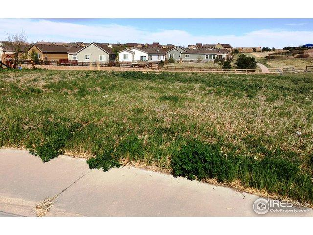 2843 Eagle Cir, Erie, CO 80516 (MLS #868849) :: Kittle Real Estate