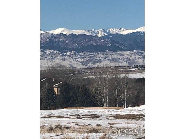 101 Berry Pl, Erie, CO 80516 (MLS #868968) :: 8z Real Estate