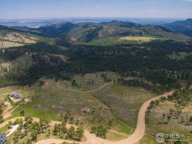 100 County Road 83, Boulder, CO 80302 (MLS #869079) :: 8z Real Estate