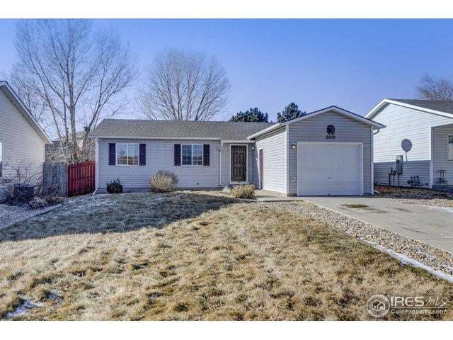 3919 Partridge Ave, Evans, CO 80620 (MLS #869460) :: Tracy's Team