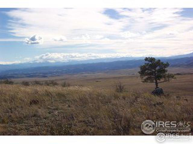 1661 Great Twins Rd, Livermore, CO 80536 (MLS #869934) :: Hub Real Estate