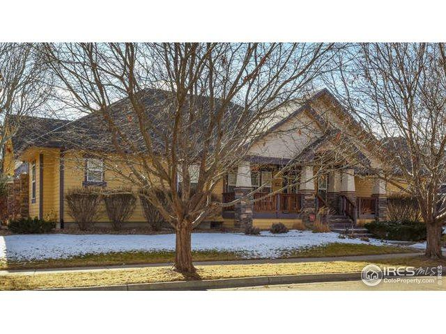 1390 Washburn St, Erie, CO 80516 (MLS #870055) :: Hub Real Estate