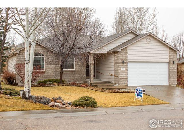 362 Blackstone Cir, Loveland, CO 80537 (#870069) :: The Griffith Home Team