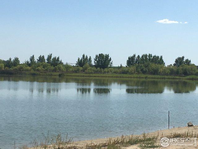 199 Sloane Lake Ct, Severance, CO 80615 (MLS #870118) :: Kittle Real Estate