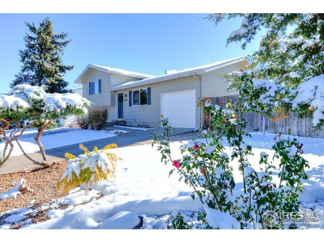 4520 W 7th St, Greeley, CO 80634 (MLS #870307) :: Bliss Realty Group