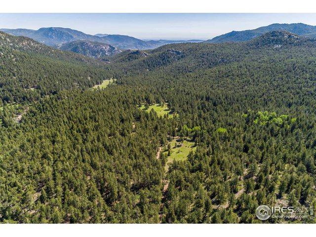 575 Spruce Dr, Lyons, CO 80540 (MLS #870566) :: The Sam Biller Home Team