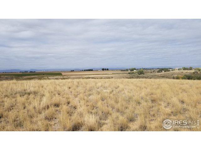 Address Not Published, Windsor, CO 80550 (MLS #871048) :: Colorado Home Finder Realty