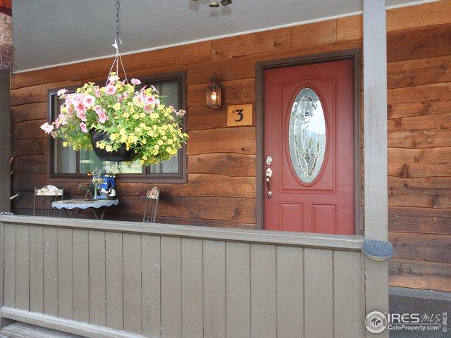 1250 S Saint Vrain Ave #3, Estes Park, CO 80517 (MLS #871053) :: Hub Real Estate