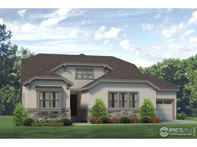 10120 E 160th Pl, Brighton, CO 80602 (MLS #871116) :: Downtown Real Estate Partners