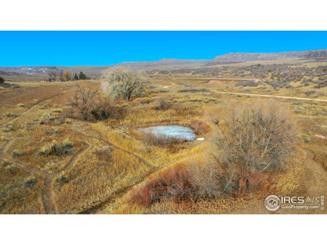 124 Springs Ranch Rd, Laporte, CO 80535 (MLS #871405) :: Hub Real Estate