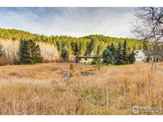 6306 S Brook Forest Rd, Evergreen, CO 80439 (MLS #871557) :: Bliss Realty Group