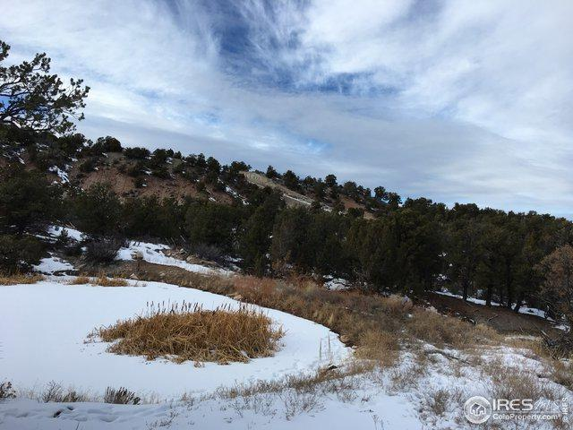 22 Elk Reserve Dr, Glade Park, CO 81523 (MLS #871600) :: Kittle Real Estate