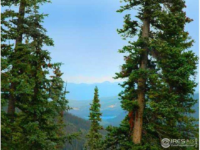 585 Quandary View Dr, Breckenridge, CO 80424 (MLS #872406) :: 8z Real Estate