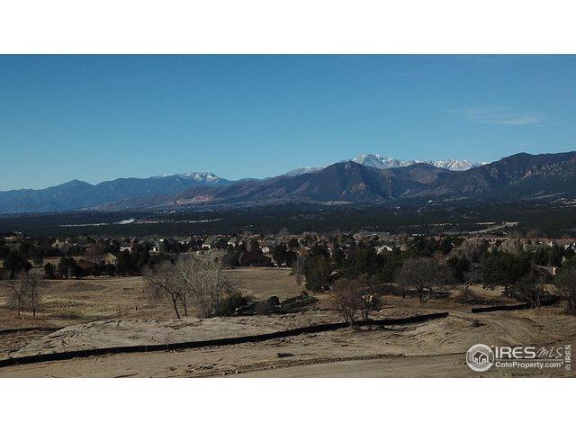 350 Silver Rock Pl, Colorado Springs, CO 80921 (MLS #872434) :: 8z Real Estate