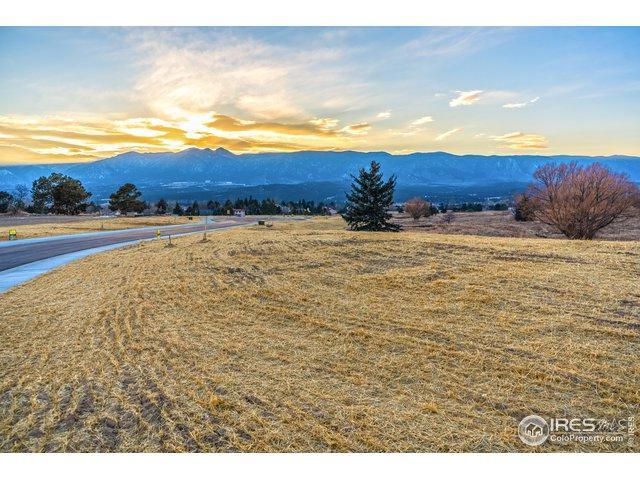 14358 Spyglass Hill Pl, Colorado Springs, CO 80921 (MLS #872655) :: 8z Real Estate