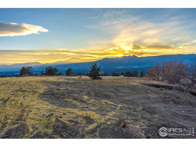 14372 Spyglass Hill Pl, Colorado Springs, CO 80921 (MLS #872662) :: 8z Real Estate