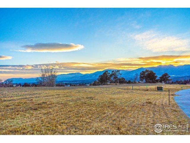 14359 Spyglass Hill Pl, Colorado Springs, CO 80921 (MLS #872664) :: 8z Real Estate