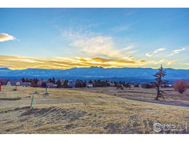 14330 Spyglass Hill Pl, Colorado Springs, CO 80921 (MLS #872667) :: 8z Real Estate