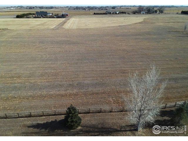 842 Glenn Ridge Dr, Fort Collins, CO 80524 (MLS #872923) :: 8z Real Estate