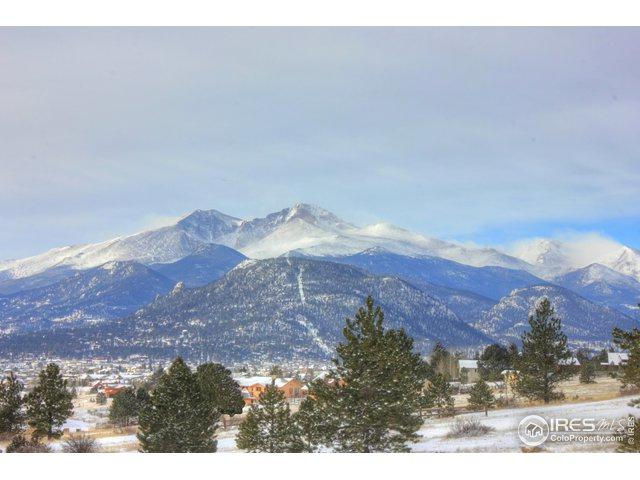 2005 Kendall Dr, Estes Park, CO 80517 (MLS #873113) :: 8z Real Estate